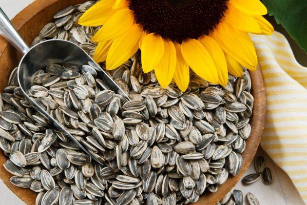 sementes de girassol - 8 Alimentos que Fazem Seu Cabelo Crescer Mais Rápido